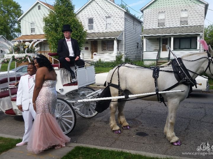 Tmx Cinderella Carriage 025 51 63825 Wellsville, OH wedding transportation