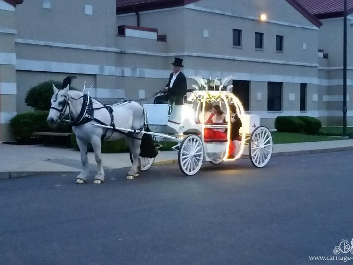 Tmx Cinderella Carriage 053 51 63825 Wellsville, OH wedding transportation
