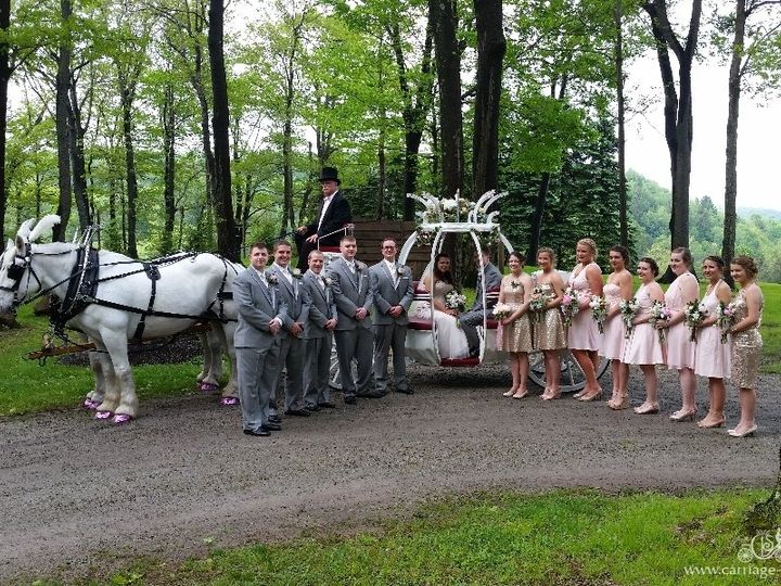 Tmx Cinderella Carriage 082 51 63825 V1 Wellsville, Ohio wedding transportation