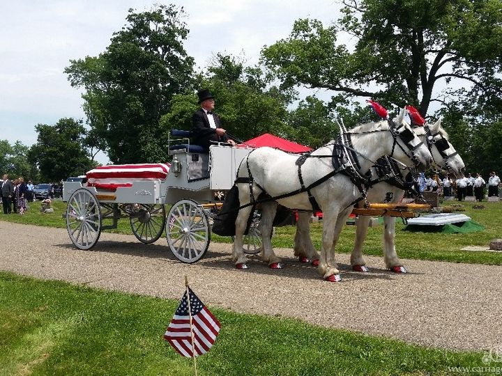 Tmx Horse Drawn Caisson 036 51 63825 Wellsville, Ohio wedding transportation