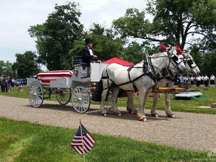 Tmx Horse Drawn Caisson 036 51 63825 Wellsville, OH wedding transportation