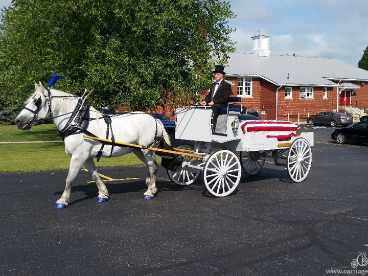Tmx Horse Drawn Caisson 055 51 63825 Wellsville, OH wedding transportation