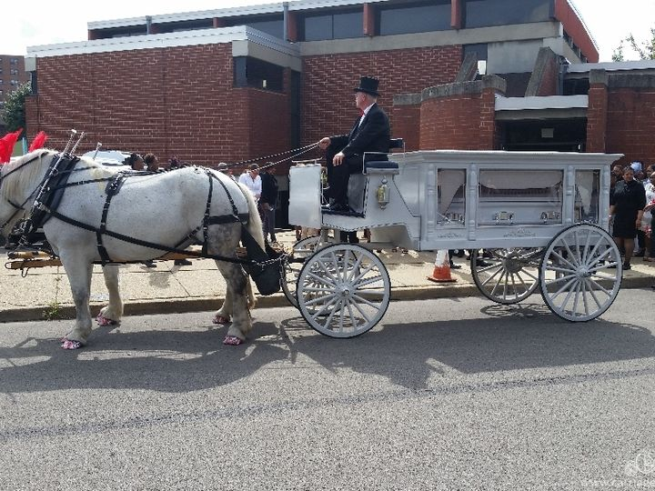 Tmx Horse Drawn Funeral Coach 086 51 63825 Wellsville, Ohio wedding transportation