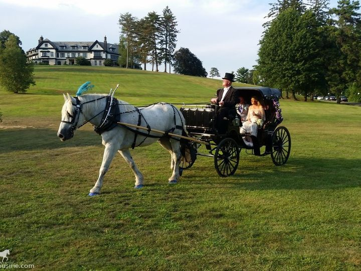 Tmx Horse Drawn Princess Carriage 022 51 63825 1566354638 Wellsville, Ohio wedding transportation