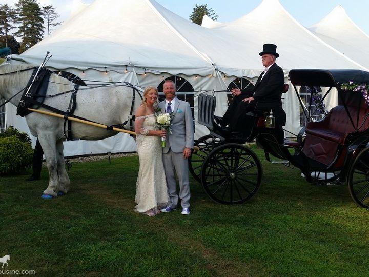 Tmx Horse Drawn Princess Carriage 030 51 63825 1566354638 Wellsville, OH wedding transportation