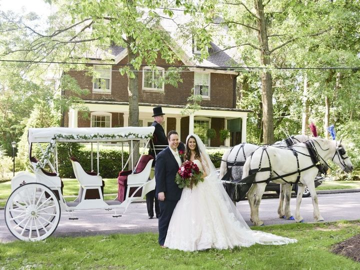 Tmx Horse Drawn Stretch Victorian Carriage 008 51 63825 Wellsville, Ohio wedding transportation
