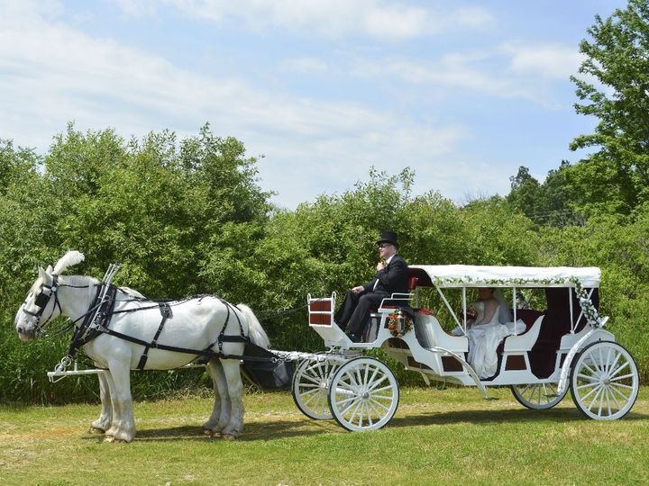 Tmx Horse Drawn Stretch Victorian Carriage 013 51 63825 Wellsville, Ohio wedding transportation