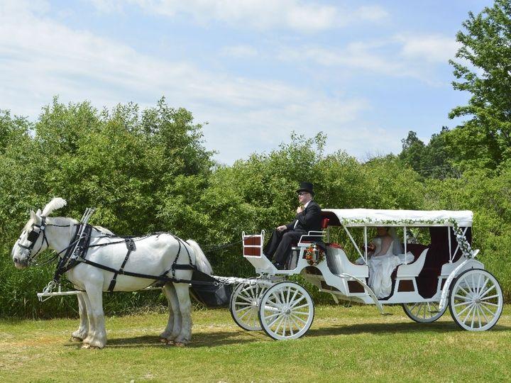 Tmx Horse Drawn Stretch Victorian Carriage 013 51 63825 Wellsville, OH wedding transportation