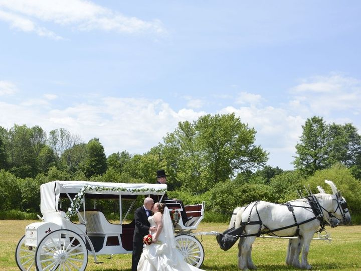 Tmx Horse Drawn Stretch Victorian Carriage 020 51 63825 Wellsville, Ohio wedding transportation