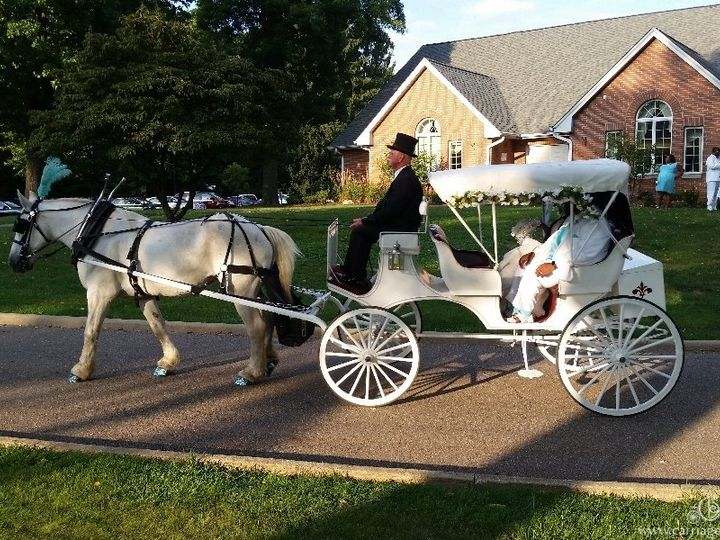 Tmx Horse Drawn Victorian Carriage 102 51 63825 V1 Wellsville, Ohio wedding transportation
