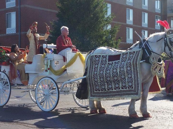 Tmx Indian Baraat Carriage 046 51 63825 Wellsville, OH wedding transportation