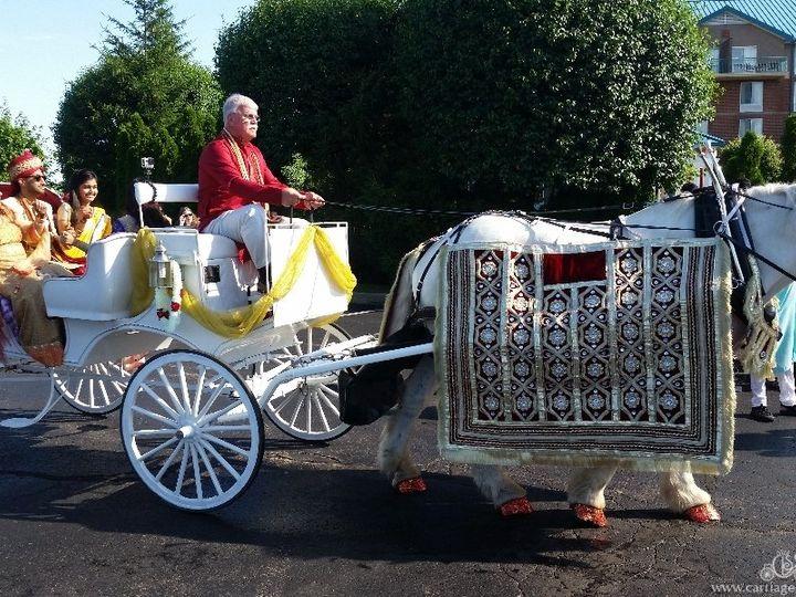 Tmx Indian Baraat Carriage 050 51 63825 Wellsville, Ohio wedding transportation
