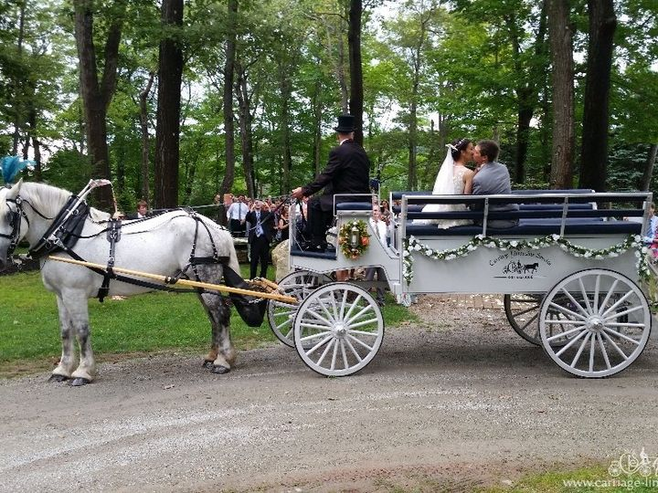 Tmx Limousine Carriage 066 51 63825 Wellsville, Ohio wedding transportation