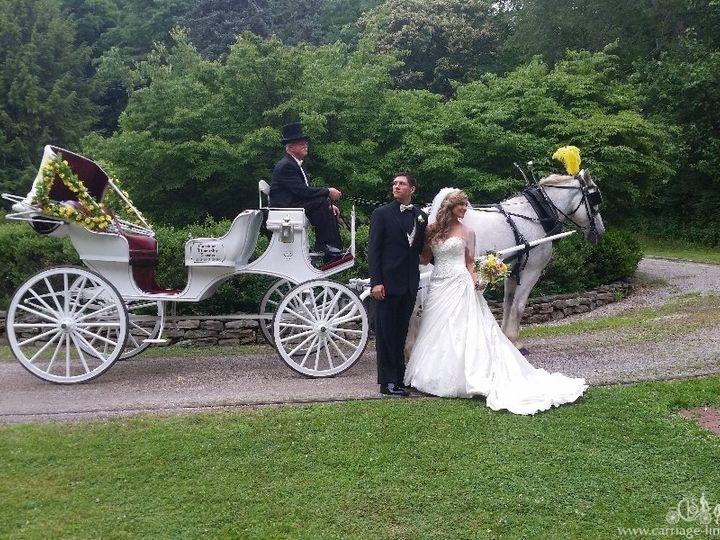 Tmx Victorian Carriage 035 51 63825 Wellsville, OH wedding transportation