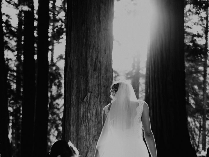 Tmx 102117 462 51 994825 Santa Cruz wedding photography