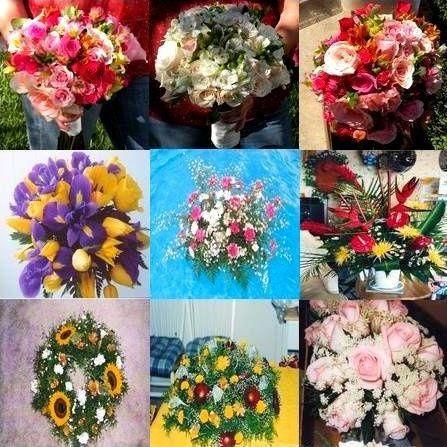 Flowers by Brenda