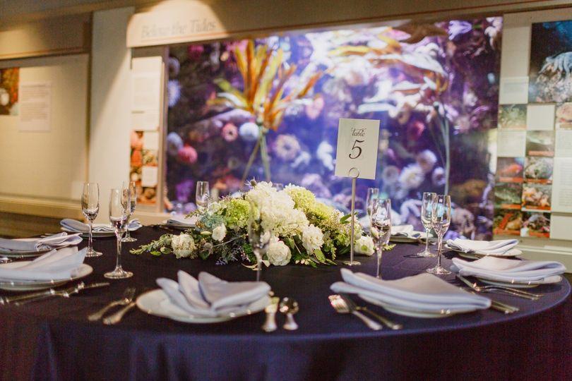 Oregon Coast Aquarium Wedding