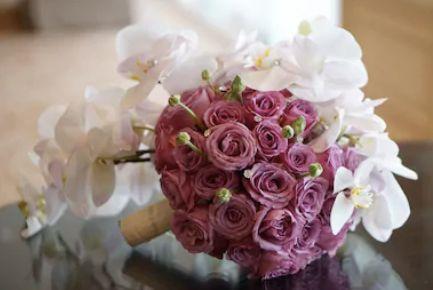 Tmx 2019 04 15 1329 51 1049925 1555350175 Clearwater, FL wedding planner