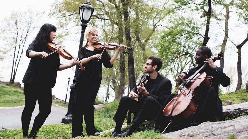IconiQ Strings Mixed Quartet