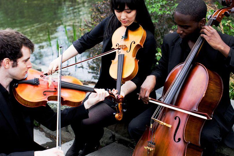 IconiQ Strings Trio
