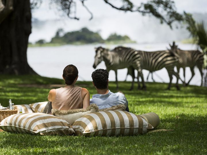 Tmx Rl Dining Picnic Zebras Lifestyle 01 G A H 51 961035 Saratoga Springs, NY wedding travel