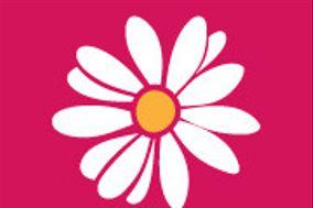 Raspberry Bouquets
