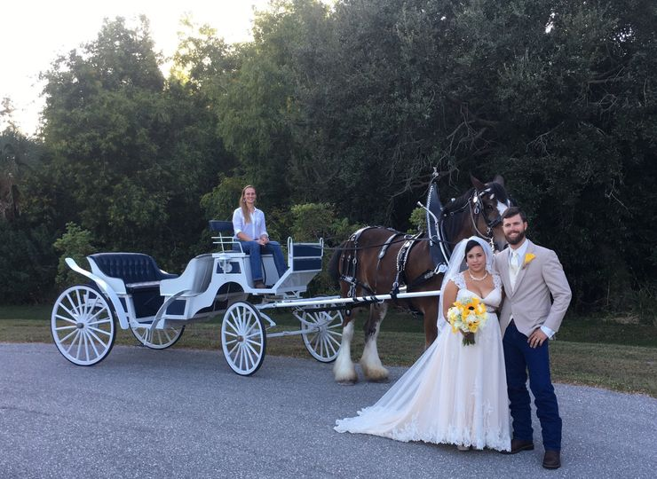 Carriage on the road