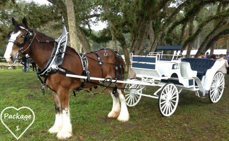 The wedding horse
