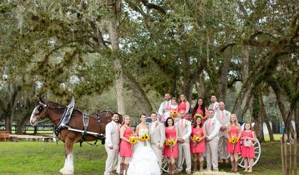 Whispering Pines Clydesdales