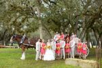 Whispering Pines Clydesdales image