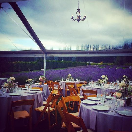 Gorgeous outdoor reception at lavender farm in Washington, coordinated by Carolina Love Events.
