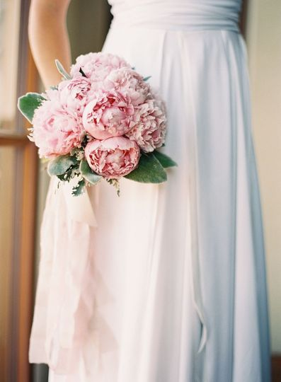 Bridal bouquet with Peonies, dusty miller, and lambsears.  Wrapped with silk ribbons.