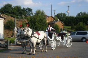 Carolina Carriage Company