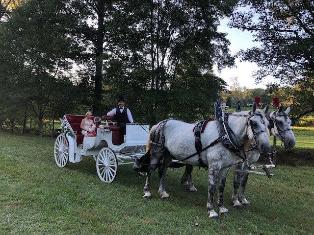 Tmx Img 3821 51 197135 159251356245298 Hickory, NC wedding transportation