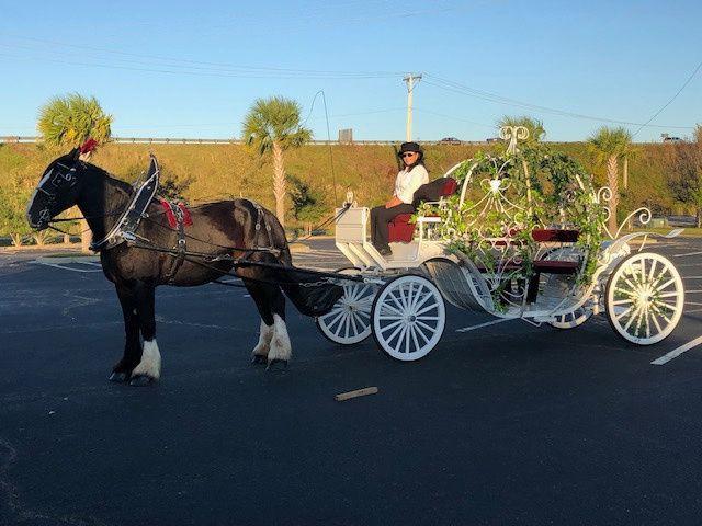 Tmx Img 4056 51 197135 159251259097657 Hickory, NC wedding transportation