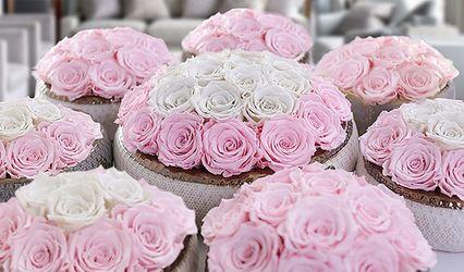 Eternal Roses®