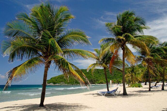 Relaxing sea breeze