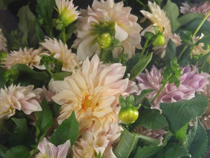 Tmx 20180831 095246 51 74235 Easton wedding florist