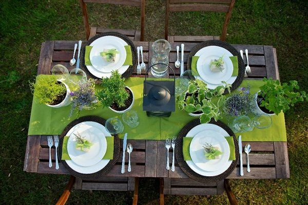 Outdoor table setup and plants