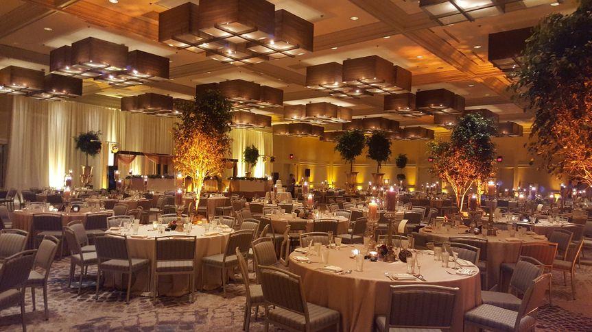 Ballroom greenery