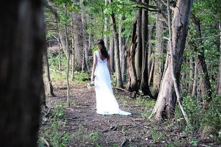 woods back web comp