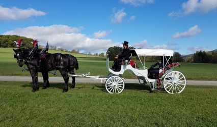 Horsing Round Carriage Service