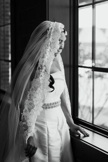 Colocasia veil