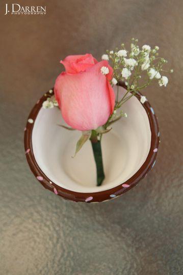 Beautiful rose - J. Darren Photography