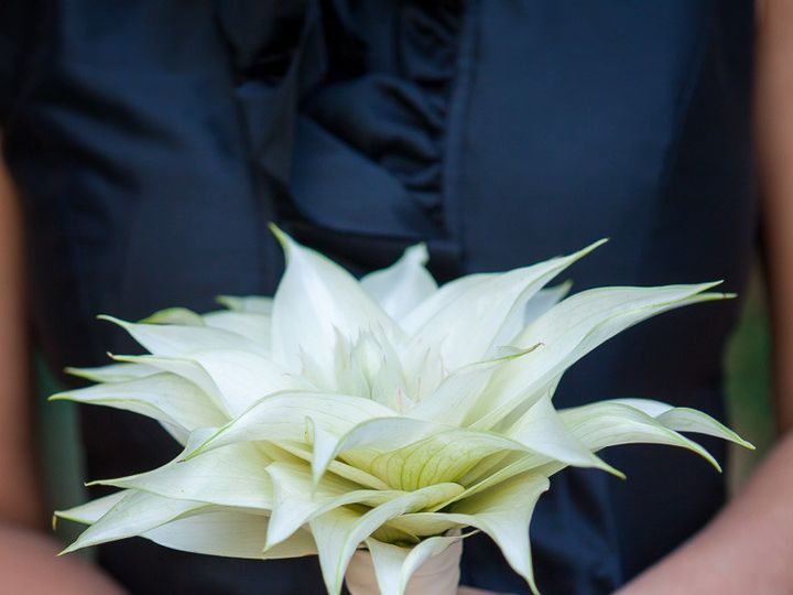 Tmx 1422572552862 193meganandzandy27swedding 3562076523 O San Jose wedding florist