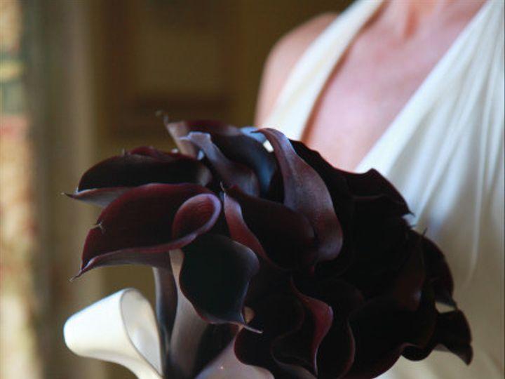 Tmx 1422572579083 Bridaldarkpurplecallalilyschwartzwalder San Jose wedding florist