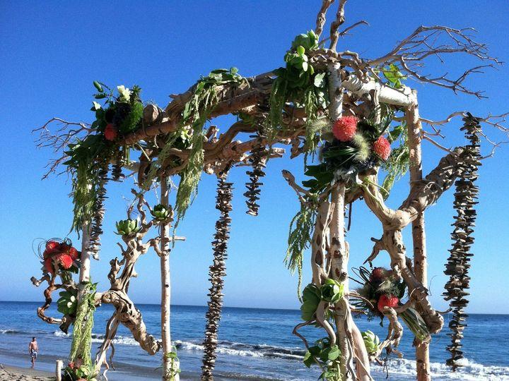 Tmx 1422573014198 Beacharbornaturaldriftwoodbirchburlwood San Jose wedding florist