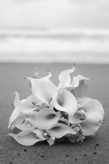 Crystal Lily Photography Beach Wedding Details