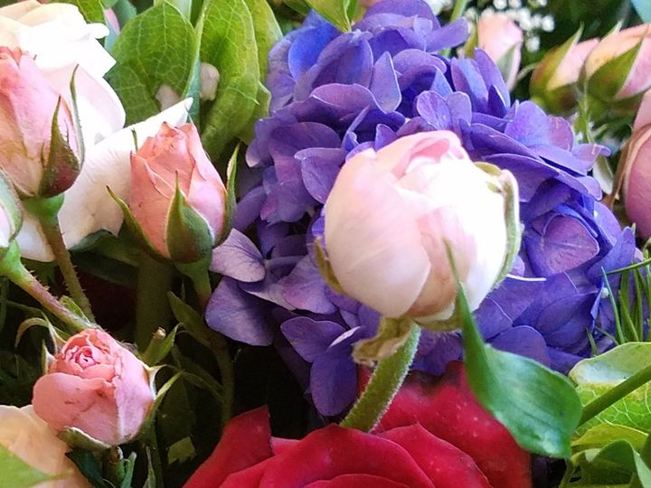 Tmx 1529978076 A12227145a7b77f9 1529978073 711307f169d473fe 1529978039097 15 20171027 114433 Melbourne, FL wedding florist