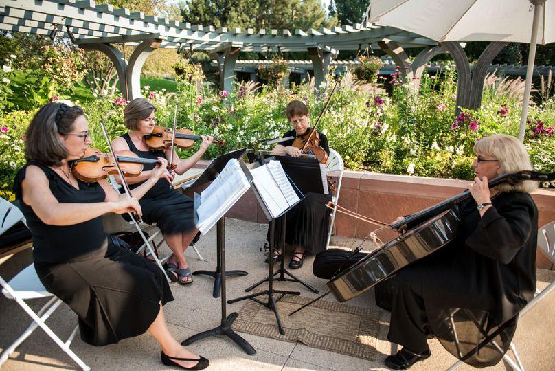 Ptarmigan Classical and Rock String Quartet